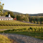 Barboursville Vineyard.jpg