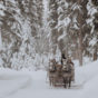 Lone-Mountain-Ranch-sleigh-ride-credit-Teri-B-Photography.jpg