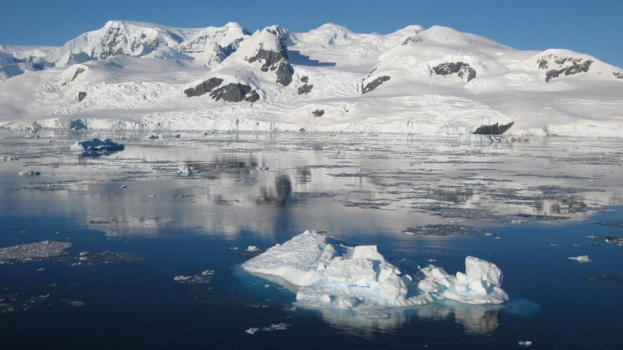 How to travel to Antarctica on a budget