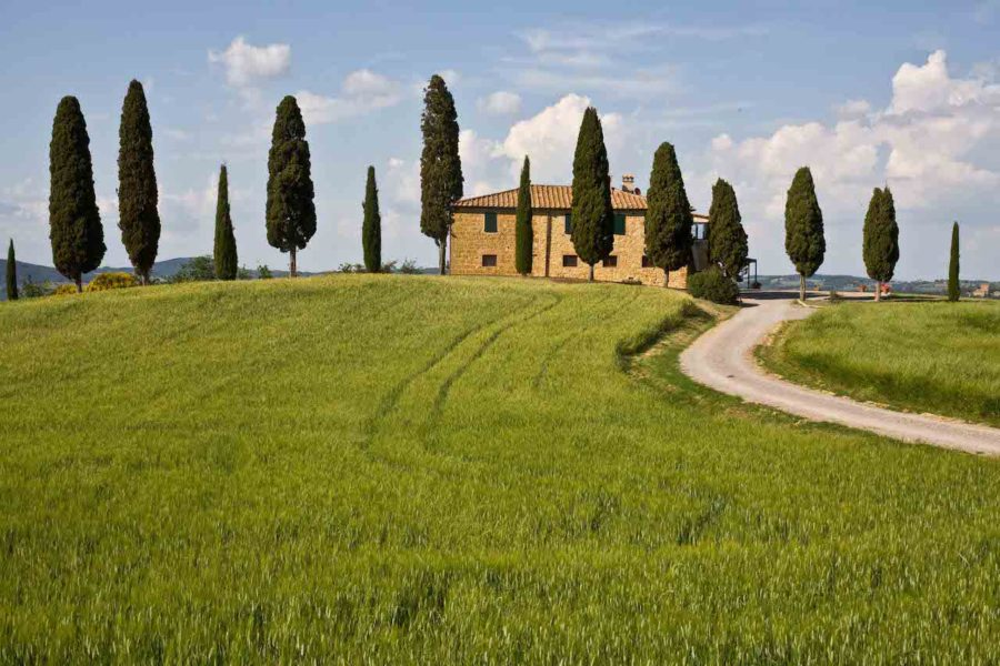 Cooking under a Tuscan sun