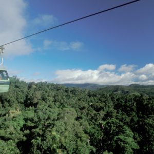 """""""EXPERIENCE THE VIEWS FROM THE SKY RAIL RAINFOREST CABLEWAY NEAR CAIRNS - IMAGE CREDIT ANDREW MARSHALL"""""""